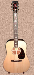 Stelling Red Fox guitar